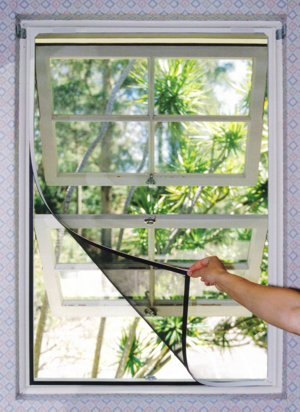 Window screens screen windors and doors 100 basement for Window insect screen